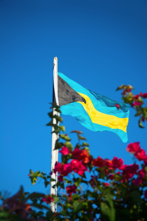Flag patriotism nationalism Bahamian bougainvillea